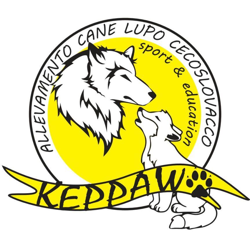 logo Keppaw finale